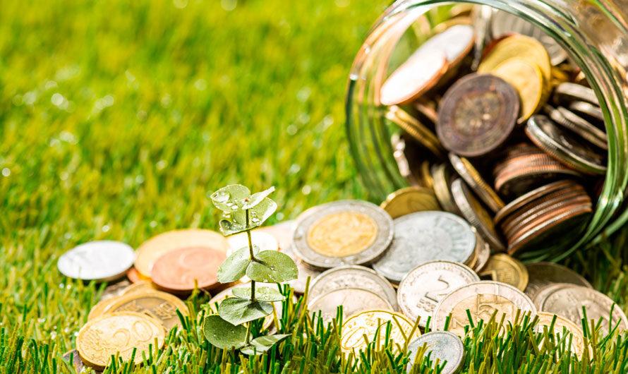 Кредит или факторинг: что лучше для малого бизнеса