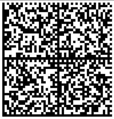Пример кода DataMatrix для маркировки парфюмерии